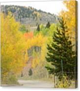 Colorado Colors Canvas Print