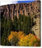 Colorado Fall 4 Canvas Print