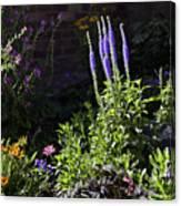 Colorado Flowers Canvas Print