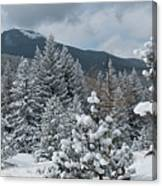 Colorado Foothills Winter Panorama Canvas Print