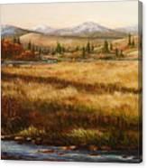 Colorado Meadow Morning Canvas Print