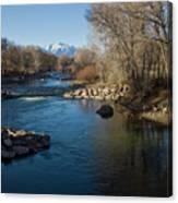 Colorado Mountain Stream Canvas Print