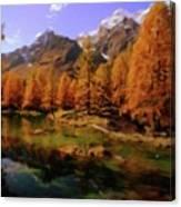 Colorado Nature Canvas Print