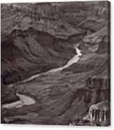 Colorado River At Desert View Grand Canyon Canvas Print