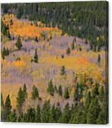 Colorado Rocky Mountains Autumn Colors Canvas Print