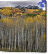 Colorado Splendor Canvas Print