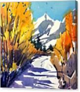 Colorado Winter 1 Canvas Print