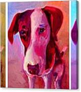 Colored Dog Strip Canvas Print