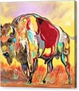 coloredd Buffalo Canvas Print