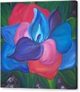 Colorful Am I Canvas Print