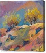 Colorful Armenia Canvas Print