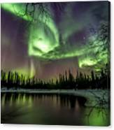 Colorful Auroras Canvas Print