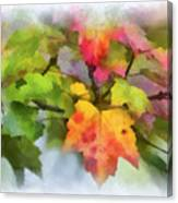 Colorful Autumn Leaves - Digital Watercolor Canvas Print