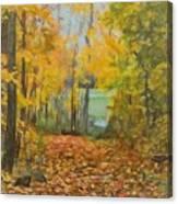 Colorful Autumn Trail Canvas Print