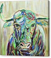 Colorful Bull Canvas Print