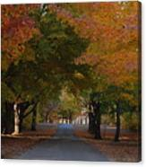 Colorful Byway Canvas Print