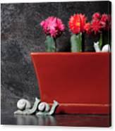 Colorful Cactus In Terracotta Pot Canvas Print