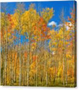 Colorful Colorado Autumn Landscape Canvas Print