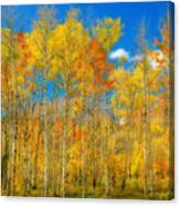 Colorful Colorado Fall Foliage Canvas Print