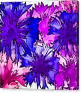 Colorful Cornflowers Canvas Print