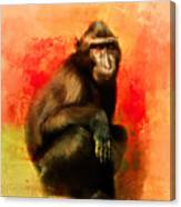 Colorful Expressions Black Monkey Canvas Print