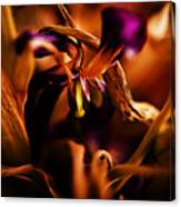 Colorful Finale 05 Canvas Print