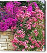 Colorful Flowering Shrubs Canvas Print