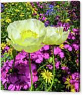 Colorful Garden II Canvas Print