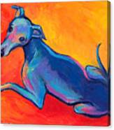Colorful Greyhound Whippet Dog Painting Canvas Print