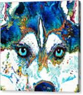 Colorful Husky Dog Art By Sharon Cummings Canvas Print