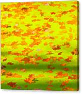 Colorful Leaves On Canal Canvas Print