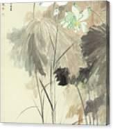 Colorful Lotus Canvas Print