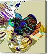 Colorful Manderin Fish Canvas Print