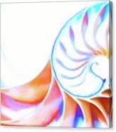 Colorful Nautilus Canvas Print