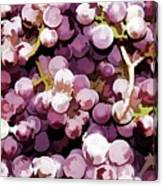 Colorful Pink Tasty Grapes In The Basket Canvas Print
