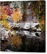 Colorful Pond Canvas Print