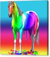 Colorful Rainbow Paint Horse Canvas Print