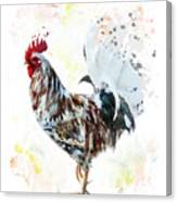 Colorful Rooster Canvas Print