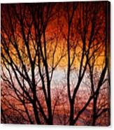 Colorful Tree Branches Canvas Print