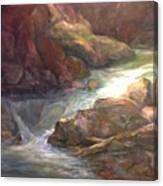 Colorful Water Flow Canvas Print