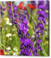 Colorful Wild Flowers Spring Scene Canvas Print