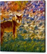 Colorized Death Valley Coyote Canvas Print