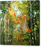 Colors Of Early Fall  Canvas Print