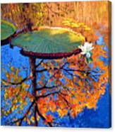 Colors Of Fall On The Lily Pond Canvas Print