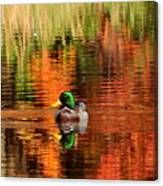 Colors Of The Morning Canvas Print