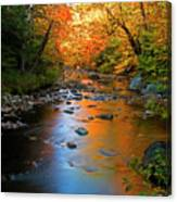 Colors On A Stream Canvas Print