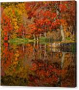 Colors Reflect Canvas Print