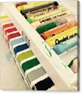 Colour Of Life Canvas Print