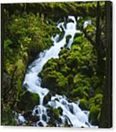 Columbia Gorge 1 Canvas Print