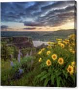 Columbia River Gorge Sunrise Canvas Print